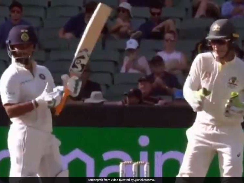 """""""MS Dhoni Is Back In ODI Side, Want To Play For Hobart?"""" Tim Paine Trolls Rishabh Pant. Watch"""