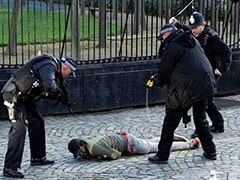 British Police Arrest Man Inside The Grounds Of Parliament