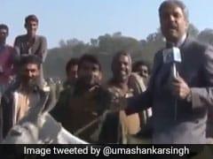 बढ़ रहे हैं पाकिस्तान में गधे, Donkey Hospital में पहुंचा एंकर तो हुआ कुछ ऐसा, देखें VIDEO