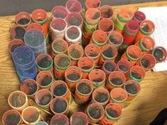 জুয়ার জন্য চুলের রোলারের মধ্যে লুকিয়ে পাখি পাচার, মার্কিন বিমানবন্দরে আটক যাত্রী