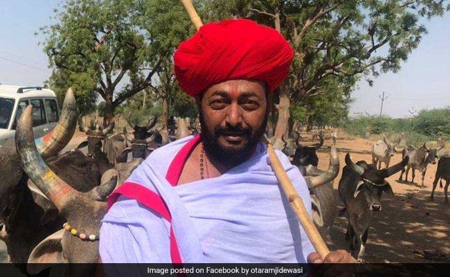 राजस्थान: देश के पहले और इकलौते 'गाय मंत्री' भी नहीं बचा पाए अपनी सीट, जानें- क्या रही हार की वजह