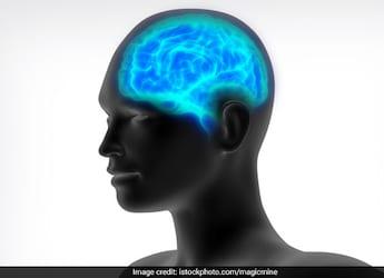 Brain Health: 5 Common Foods That May Help Improve Brain Health