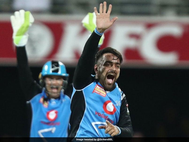 Rashid Khan Makes Impressive BBL Start, Guides Adelaide Strikers To Win In Season-Opener