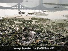 Pollution In Gomti River Causes Devotees To Avoid Holy Dip On Sankranti