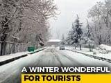 "Video : In Kashmir, Tourists Enjoy ""White January"""