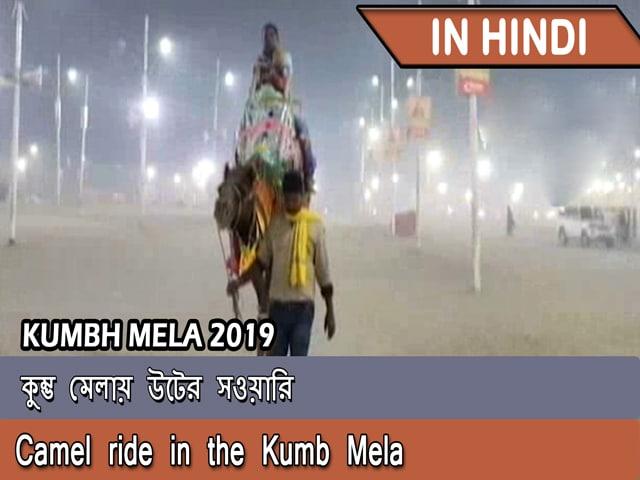 Video : কুম্ভ মেলায় উটের সওয়ারি