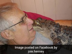 """""""He Likes To Give Hugs,"""" Says Man With Emotional Support Alligator"""