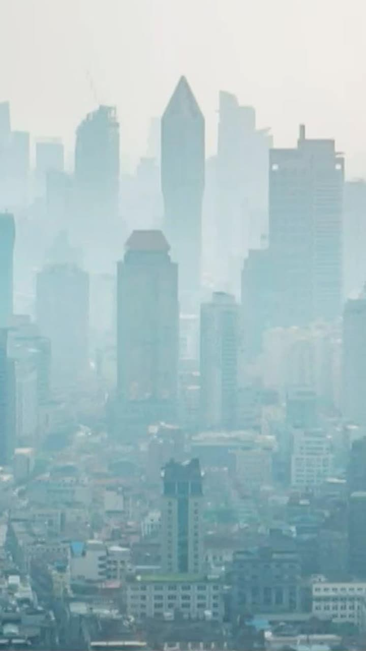 High Levels Of This Environmental Pollutant Can Lead To Premature Death