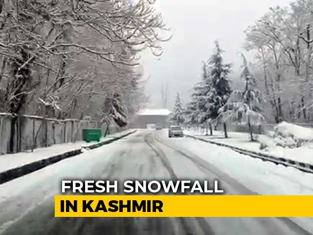 "Video : In Kashmir, Tourists Enjoy ""White January"""