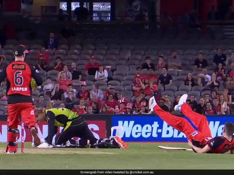 Bizarre Run-Out In Big Bash League Will Leave You In Splits. Watch