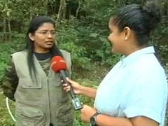 Bureaucrat, 38, First Woman To Trek To Kerala Peak After Court Lifts Ban