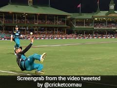 Watch: Brendon McCullum's Incredible Boundary-Line Save Sparks Debate On Twitter