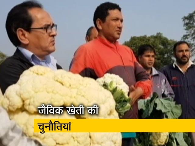 Videos : जैविक खेती करने वाले किसानों के सामने क्या हैं चुनौतियां
