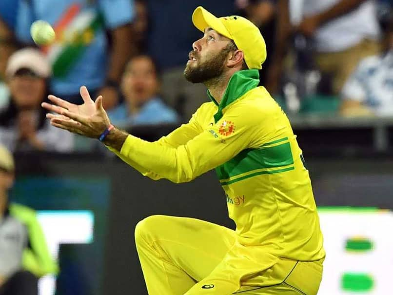 Glenn Maxwell Seeks Catching Tips From Haidee Birkett After Dropping MS Dhoni In ODI Series Decider