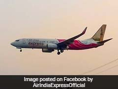 Coronavirus: 354 Stranded Indians To Fly Back Home In First Two Flights From UAE