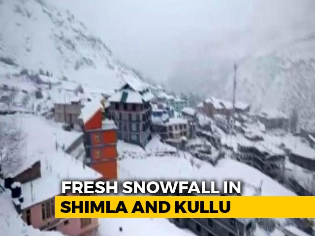 Video : Whiteout In Himachal Pradesh, Surge Of Tourists In Shimla