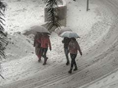 Cold Wave Grips Most Of North India; Himachal Sees The Sun After 3 Days