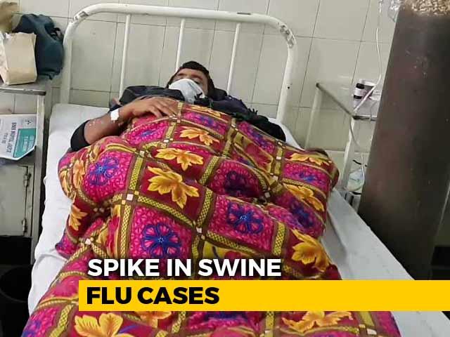 Video : Spike In Swine Flu Cases In Rajasthan