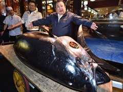 Japan Sushi Tycoon Pays Record $3.1 Million For Rare Bluefin Tuna