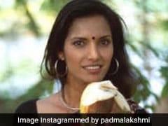 #10YearChallenge: 10 साल पहले ऐसी दिखती थीं पद्मा लक्ष्मी, इन स्टार्स का भी बदला लुक
