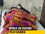 Video : Spike In Swine Flu Cases In Rajasthan