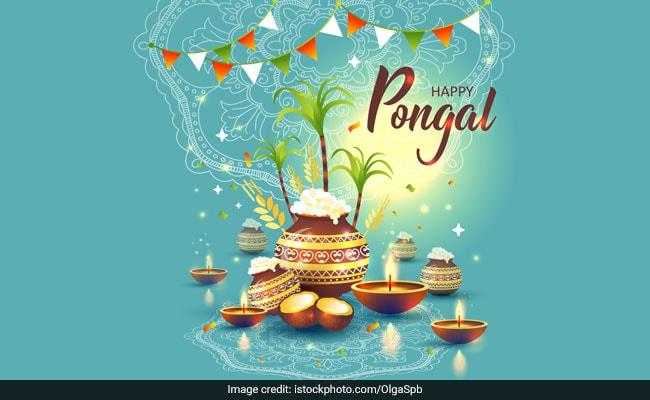Pongal 2019  Wishes, Images, Wallpapers, Quotes, Status, SMS, Messages, Photos, Pics, And Greetings