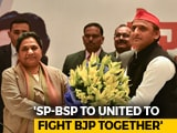 Video: Akhilesh Yadav, Mayawati To Contest 50:50 In UP, No Entry For Congress