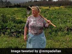 डोनाल्ड ट्रंप की हमशक्ल महिला की PHOTOS वायरल, करती हैं आलू की खेती
