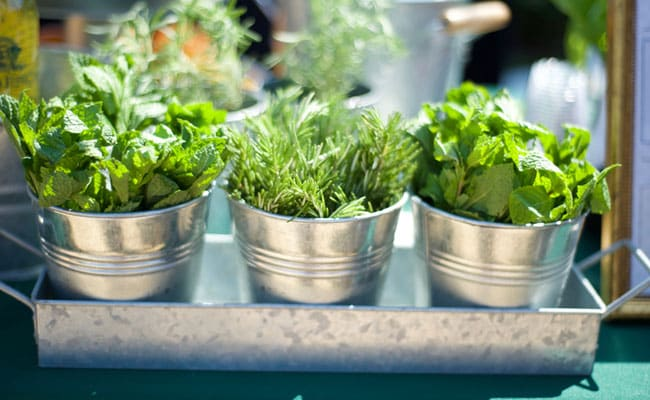 Detox By Adding These Herbs In Your Daily Diet