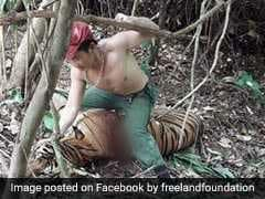 "Poacher 'Punches' Blood-Covered Tiger In ""Sickening"" Pic"