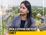 The Pollution Detox Diet