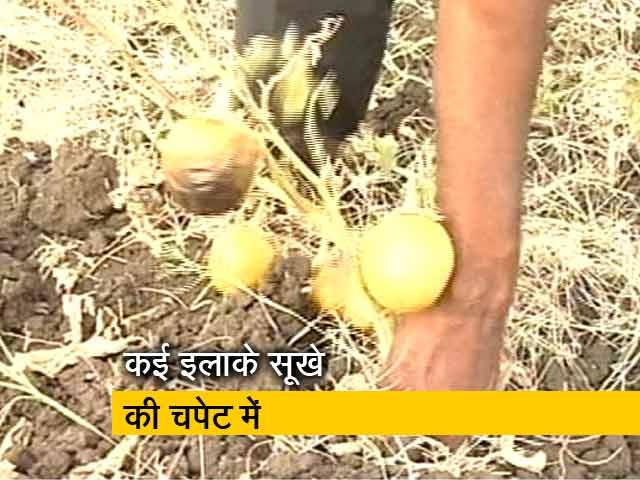Videos : महाराष्ट्र में मनरेगा असफल?