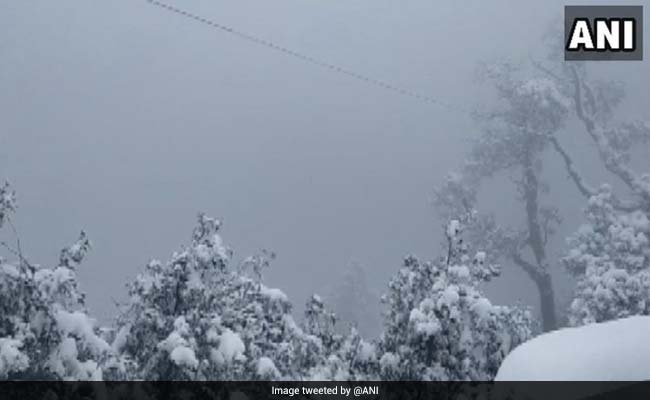Nainital, Mussoorie Receive Fresh snowfall Today