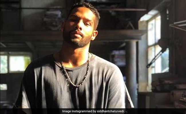 After Struggling For 6 Years, Gully Boy's MC Sher Aka Siddhant Chaturvedi Roars. His Story