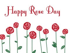 Happy Rose Day 2019: Rose Day Images, Quotes, WhatsApp Messages, Shayari And SMS