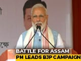 Video : Misinformation Being Spread Over Citizenship Bill, Says PM Modi In Assam