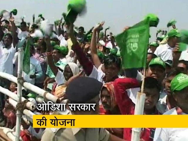 Video : ओडिशा में कालिया योजना से किसानों की मदद
