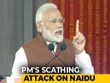 Video : Chandrababu Naidu Robbing Andhra, Promoting Son: PM Modi