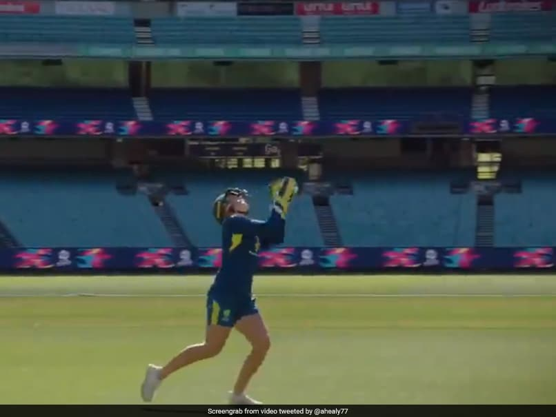 Australian Woman Cricketer Alyssa Healy Takes Highest Catch To Set New World Record. Watch