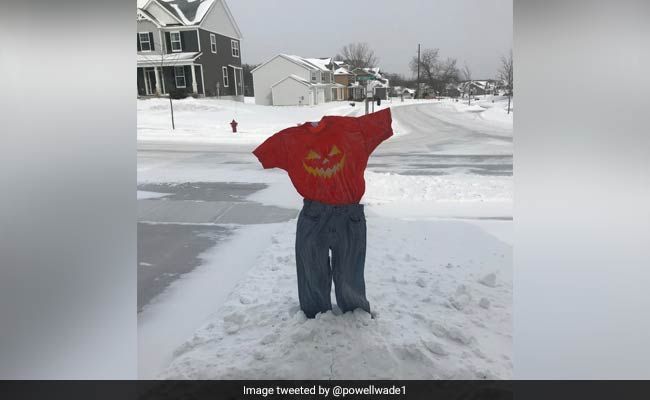 Thanks To Polar Vortex, #FrozenPants Take Over The Internet
