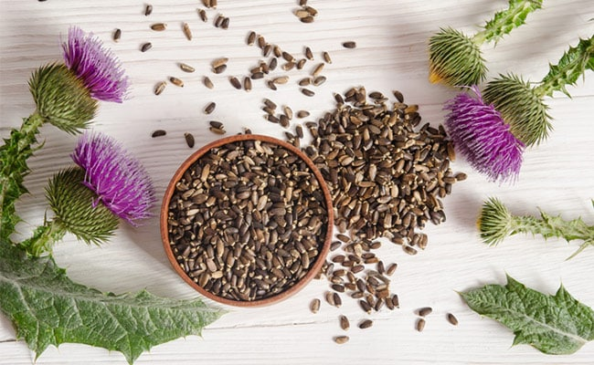 Milk Thistle For Type-2 Diabetes: How This Herb Can Help Regulate Blood Sugar Levels In Patients