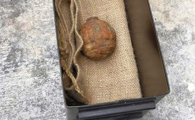 Hong Kong police destroy WWI grenade found in potatoes