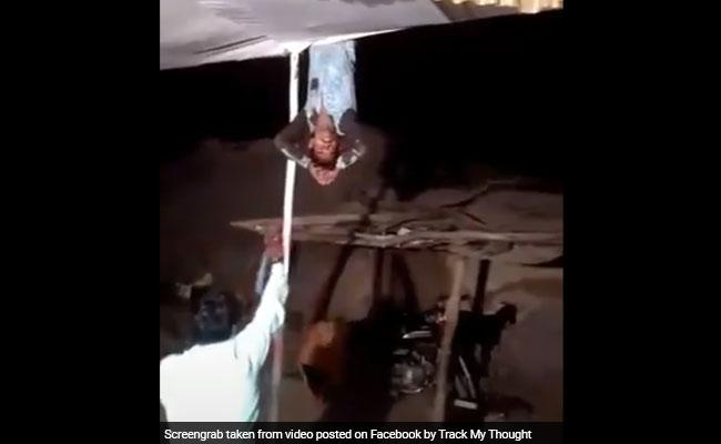 शादी में इस शख्स ने किया ऐसा Nagin Dance, सांप बनकर लटक गया टेंट से, देखें VIDEO