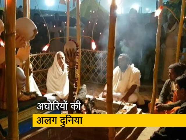 Video : कुंभ मेले में क्या कर रहे अघोरी?