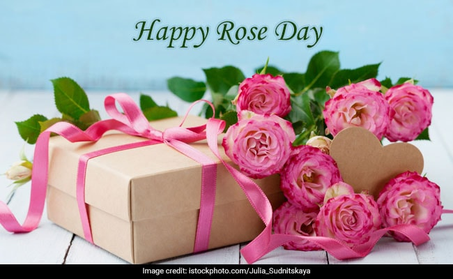 Happy Rose Day 2019 Wishes Images Wallpapers Quotes Status