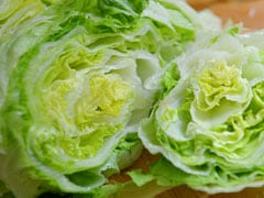 This Genetically Modified Lettuce May Help In Healing Bone Fracture