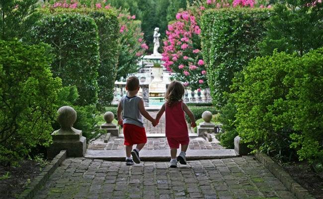 First Semi-Identical Twins Identified In Pregnancy