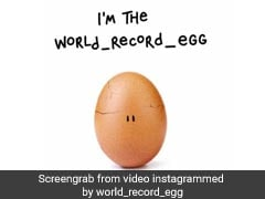 The Real Story Behind The Egg That Broke Kylie Jenner's Insta Record