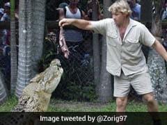 Steve Irwin: मगरमच्छ और सांप से खेलता था ये शख्स, हुई थी ऐसे मौत, जानें स्टीव इरविन की खास बातें