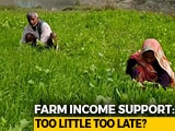 Video : Ground Report: What Rs. 6,000 Dole Means To India's Poorest Farmers